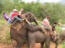 Now That's Riding the Elephant