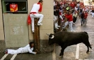 Running from the Bulls