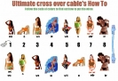 Cross Over Cable How To