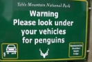 Check for Penguins