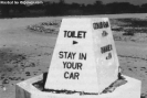 Toilet Stay in Your Car